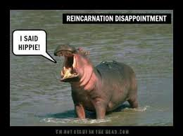 Reincarnated to a Hippo